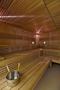 sauna-gross